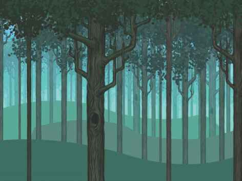 Forest Fantasy Outline Paintings