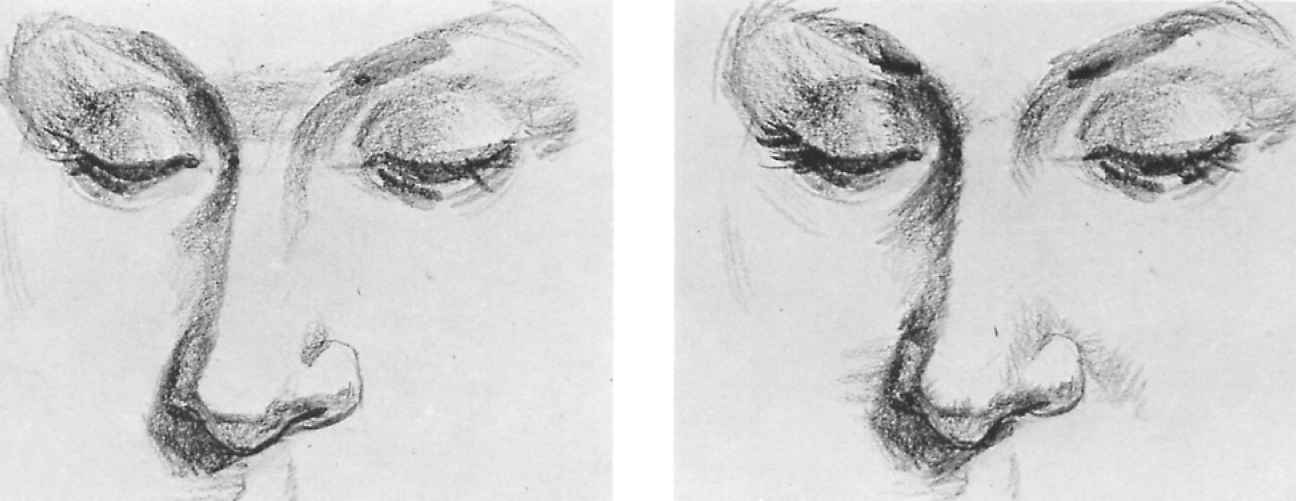 how to draw portraits from photographs step by step