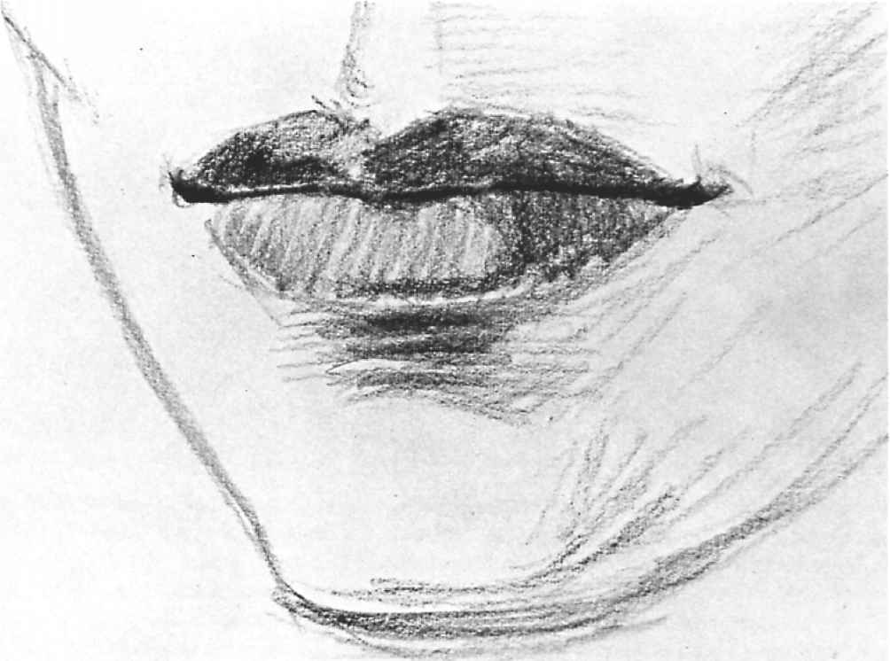 Portrait Mouth Drawings