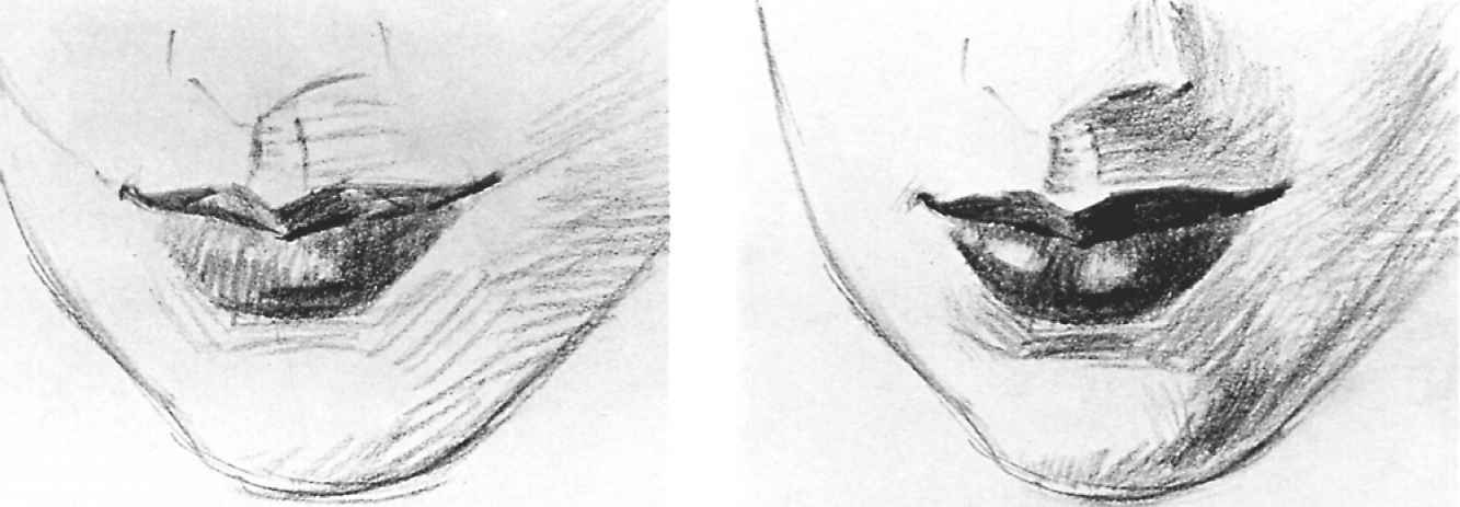 Nose With Lips Drawing