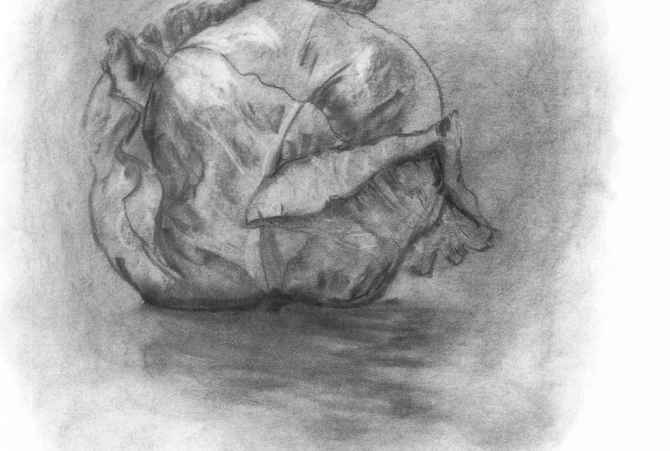 Drawing Charcoal Vegetable
