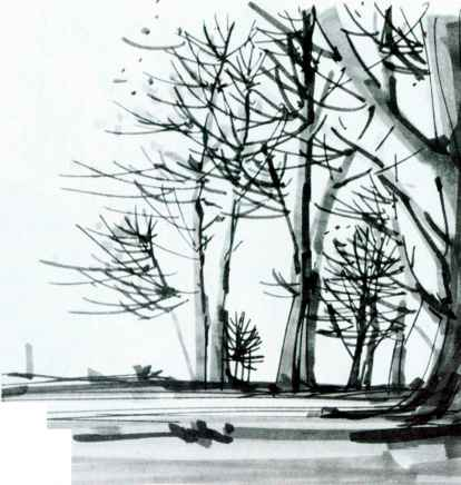 Black Marker Sketches Nature