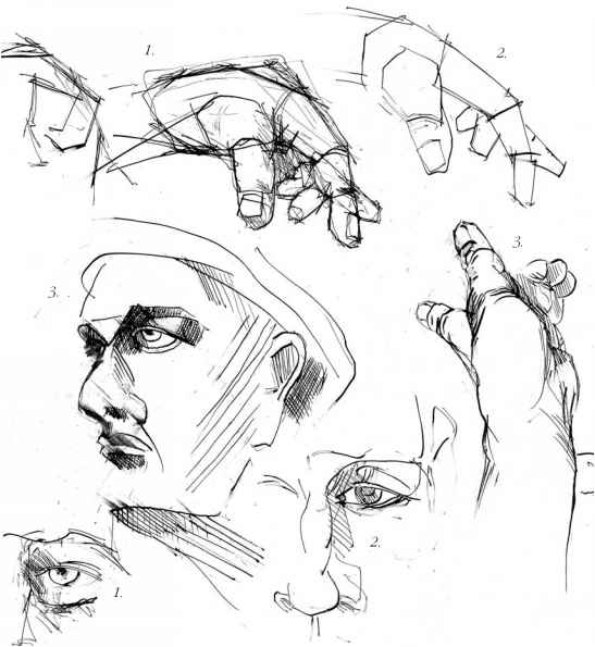 Female Hand Sketch