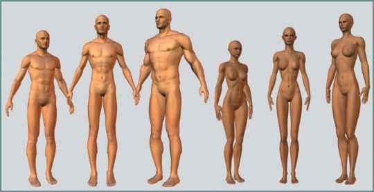 malos nude body replacer